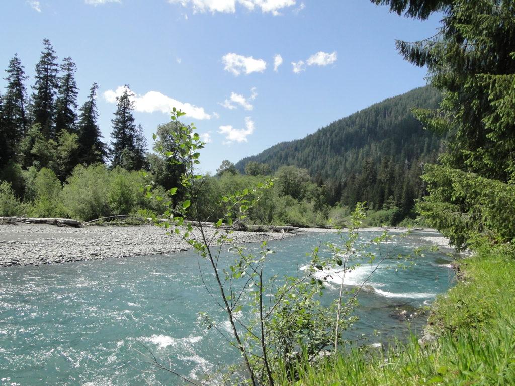 Hoh River at the Olympic National Park - Forks, Washington