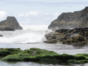 Seashore nearby Florence, Oregon
