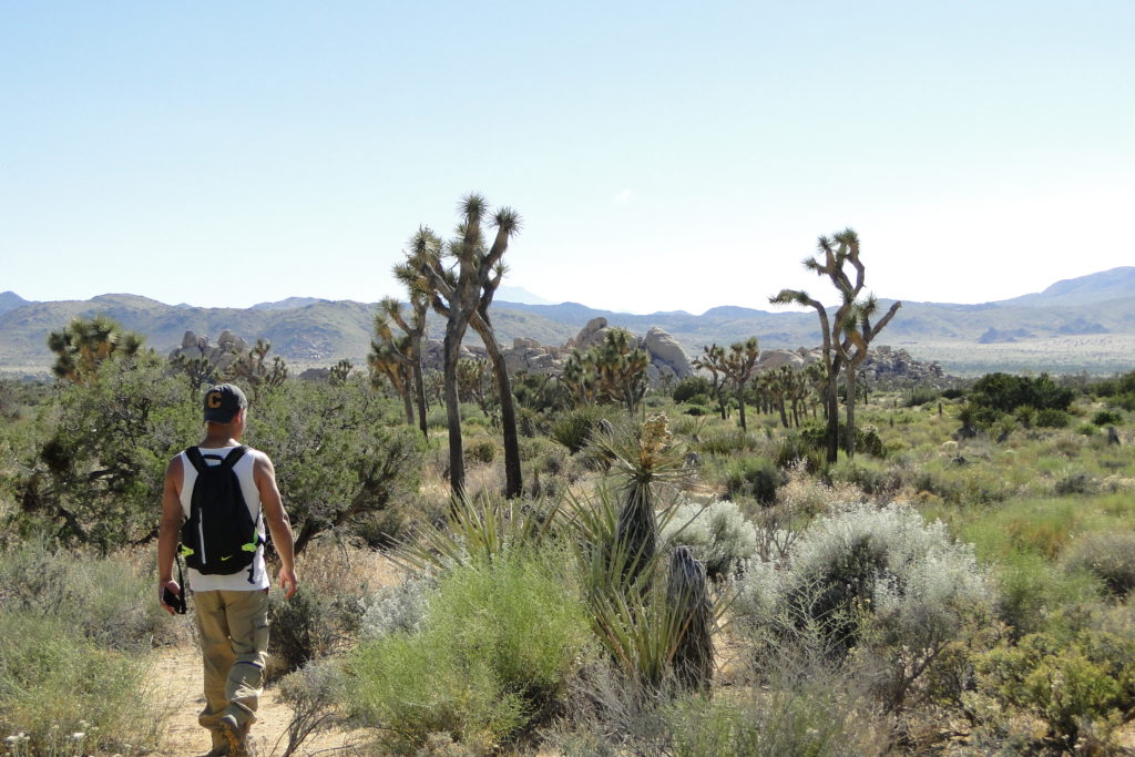 Hiking at Joshua Tree National Park, California