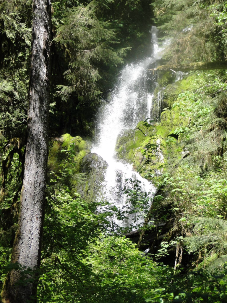 Mineral Creek Falls - Hoh River Trail - Olympic National Park, Washington