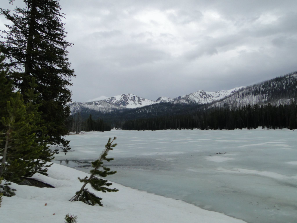 Wintry conditions at Yellowstone National Park in early Spring